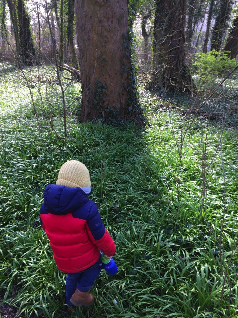 Kind im Wald
